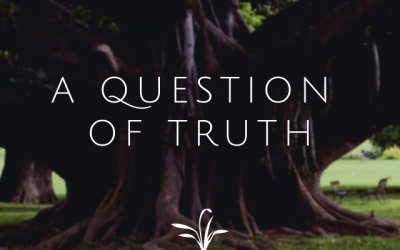 A Question of Truth – My Morning 3×3